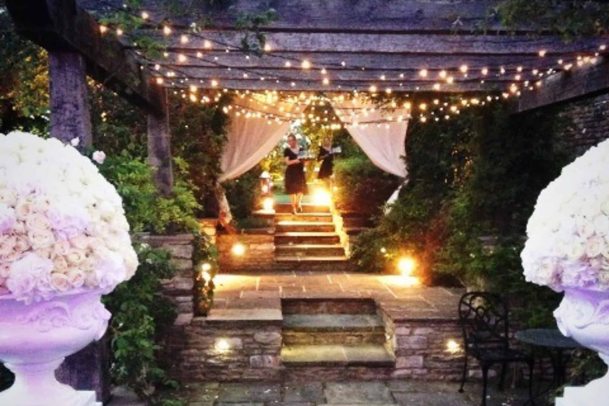 Star lit garden